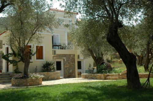 Gera's Olive Grove (Elaionas tis Geras)