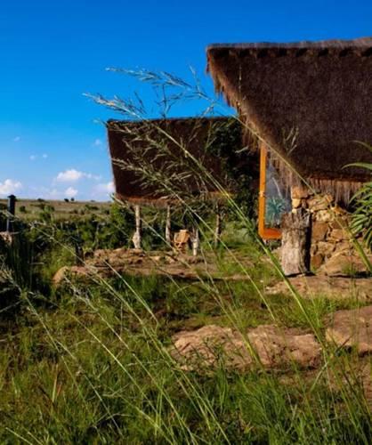 Nkwali Lodge