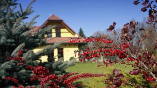 Vila Zahrada