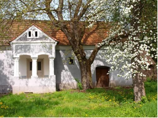 Walnut Garden - Diókert