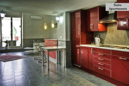 Suite Apartments Angioini