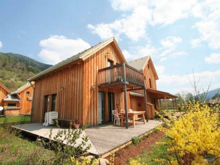 Holiday Home Haus Antl St Georgen/Murau