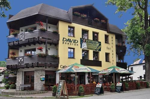 David Hotel Pension