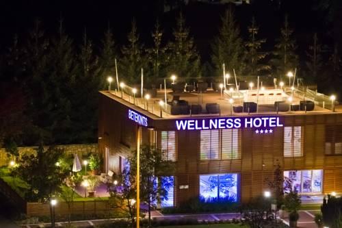 Betekints Wellness & Konferencia Hotel