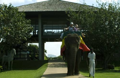 Elephant Corridor Hotel,Luxury Lifestyle Retreat